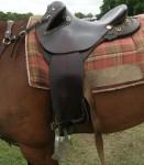 Saddle Rings